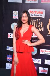 adah sharma hot at iifa awards 2017DSC_02530004
