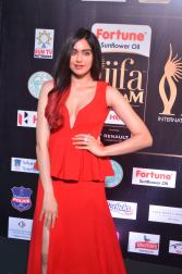 adah sharma hot at iifa awards 2017DSC_02600011