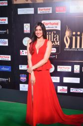 adah sharma hot at iifa awards 2017DSC_02760027