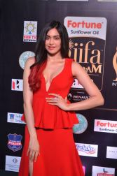adah sharma hot at iifa awards 2017DSC_02890040