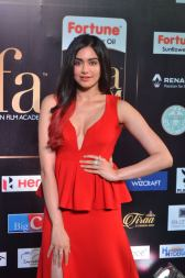 adah sharma hot at iifa awards 2017DSC_02950046