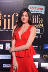adah sharma hot at iifa awards 2017DSC_03240075