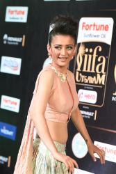 akshara hassan hot at iifa awards 2017Akshara Hassan (37)