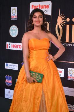 anisha ambrose hot at iifa awards 2017 DSC_15080562
