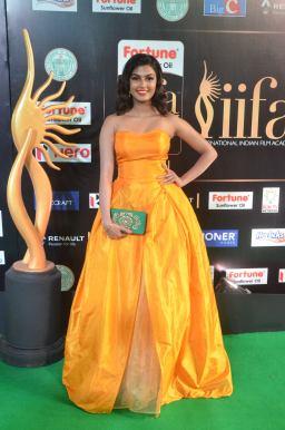 anisha ambrose hot at iifa awards 2017 DSC_15440598