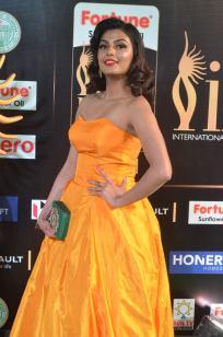 anisha ambrose hot at iifa awards 2017 DSC_15760630
