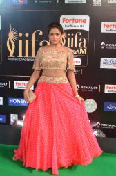 ashmitha sood hot at iifa 20171