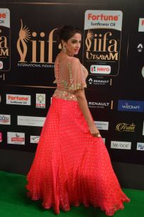 ashmitha sood hot at iifa 201734