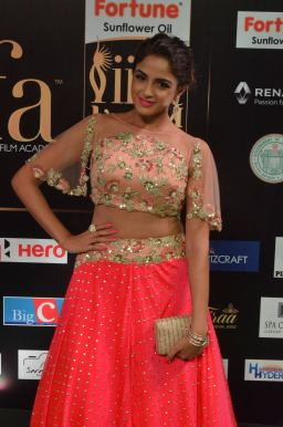 ashmitha sood hot at iifa 201751