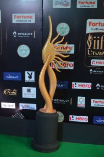 celebrities at iifa awards 2017 - 3DSC_09460001