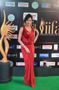 celebrities at iifa awards 2017 - 3DSC_18510902