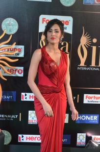 celebrities at iifa awards 2017 - 3DSC_18550906