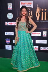 celebrities at iifa awards 2017DSC_01460035