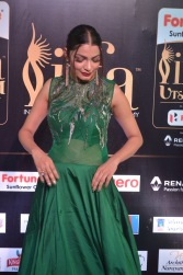 celebrities at iifa awards 2017DSC_0574