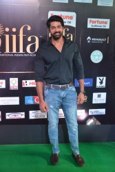 celebrities at iifa awards 2017DSC_0813