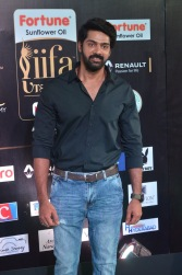 celebrities at iifa awards 2017DSC_0816