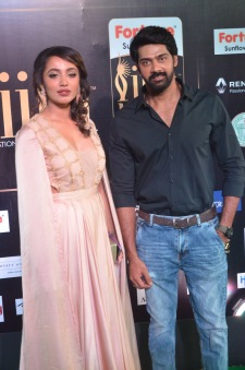 celebrities at iifa awards 2017DSC_0817