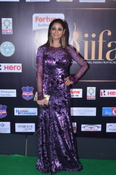 DSC_6626shilpi sharam iifa awards
