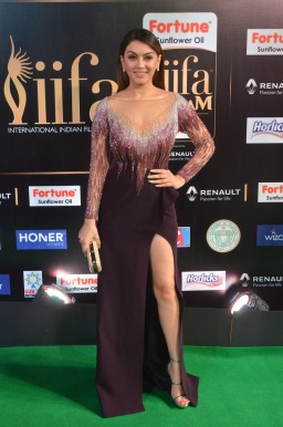 hansika hot at iifa awards 2017DSC_8283