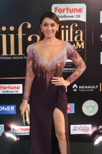 hansika hot at iifa awards 2017DSC_8291