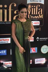jnani iyer hot at iifa awards 2017Janani Iyer (41)
