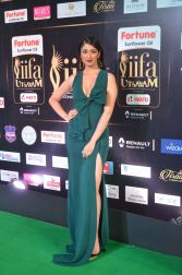 laxmi rai hot at iifa awards 2017DSC_88540025