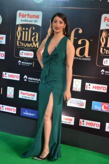 laxmi rai hot at iifa awards 2017DSC_89380107