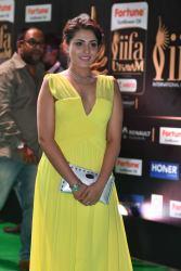 madhu shalini hot at iifa awards 2017 HAR_55660018