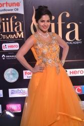 madhumitha hot at iifa awards 2017DSC_9952
