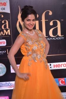 madhumitha hot at iifa awards 2017DSC_9960