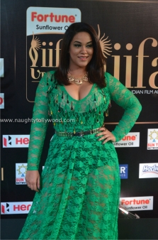 mumaith khan hot at iifa awards 2017 DSC_16220676_wm
