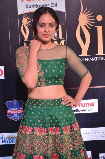 nandita swetha hot at iifa awards 2017DSC_78500024