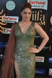 nikesha patel hot at iifa awards 201735