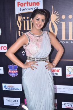 nikki galrani hot in saree at iifa awards 2017DSC_7585