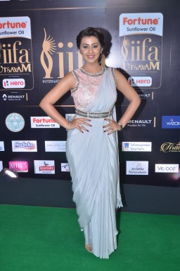 nikki galrani hot in saree at iifa awards 2017DSC_7593