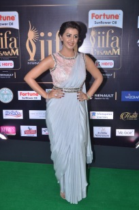 nikki galrani hot in saree at iifa awards 2017DSC_7602