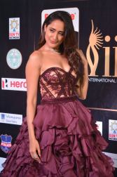 pragya jaiswal hot at iifa awards 2017 HAR_27560002