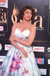 pranitha subhash hot at iifa awards 2017HAR_2546