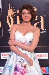 pranitha subhash hot at iifa awards 2017HAR_2548