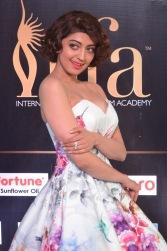 pranitha subhash hot at iifa awards 2017HAR_2557