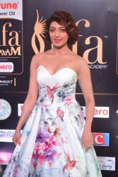 pranitha subhash hot at iifa awards 2017HAR_2559