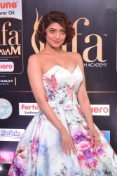 pranitha subhash hot at iifa awards 2017HAR_2637