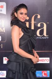 rakulpreetsingh hot at iifa awards 2017DSC_24170032