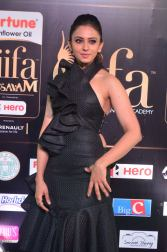 rakulpreetsingh hot at iifa awards 2017DSC_24390054