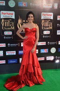 ritu varma hot at iifa awards 2017 DSC_12880343