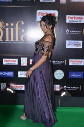 sanjjana hot at iifa awards 2017DSC_75490053
