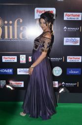 sanjjana hot at iifa awards 2017DSC_75510055