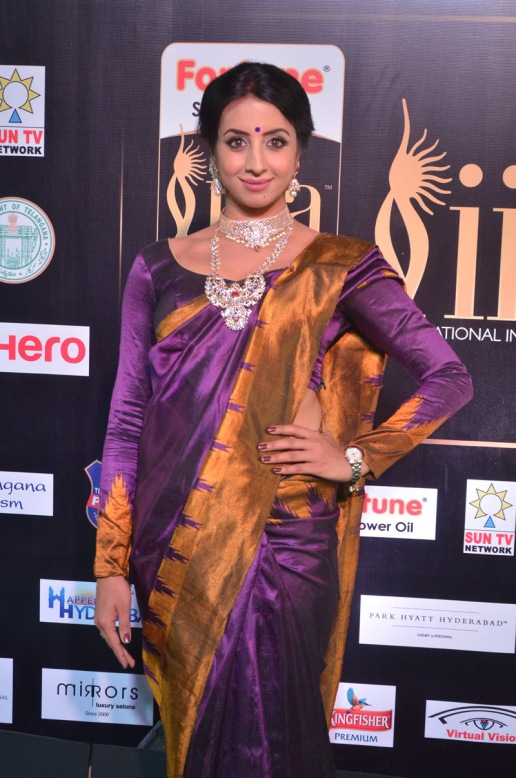 sanjjana hot in saree at iifa awards 2017 DSC_0586