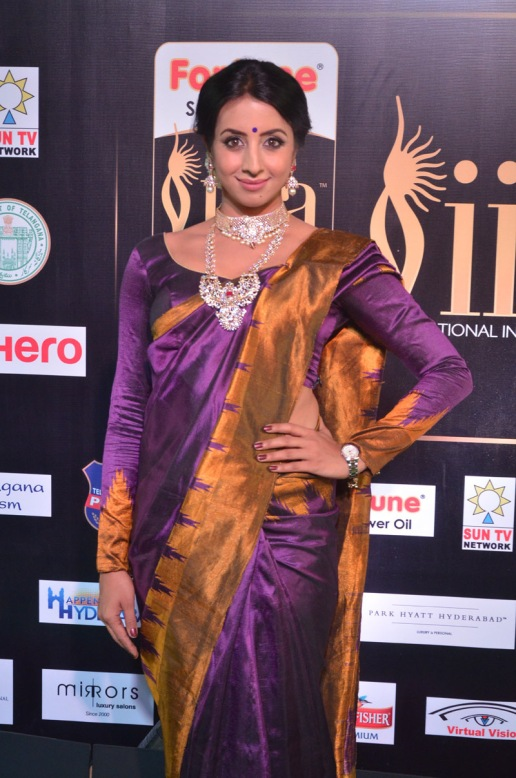 sanjjana hot in saree at iifa awards 2017 DSC_0589
