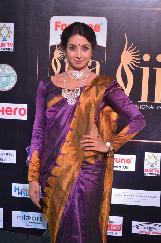 sanjjana hot in saree at iifa awards 2017 DSC_0592
